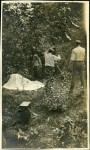 Shooting Fanchon the Cricket on location in Delaware Water Gap, Pennsylvania - 1915