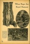 1926 - From <em>Motion Picture</em> magazine